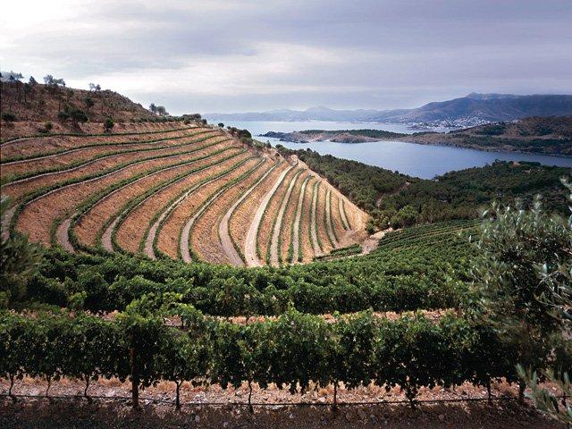 Emporda wines