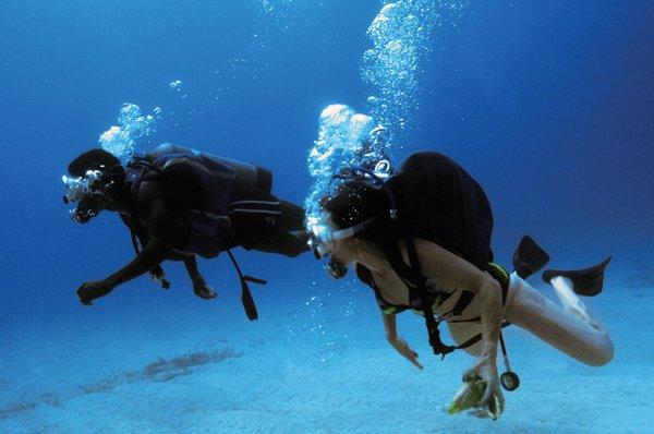 Diving in L'Estartit