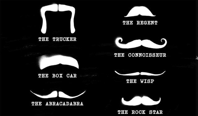 Movember 2013