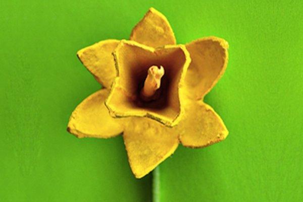 taller-flors.png