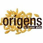 Logo origens.jpg
