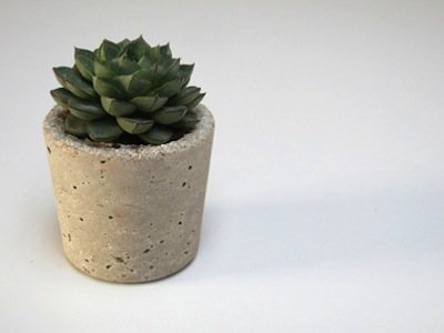 Eco planter 1