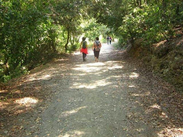 Les-Aigües-Road-Walk-1.jpg