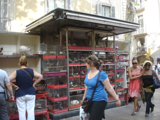Rambla animal stalls