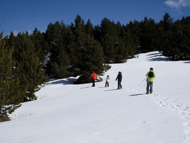 snow-shoeing2.jpg