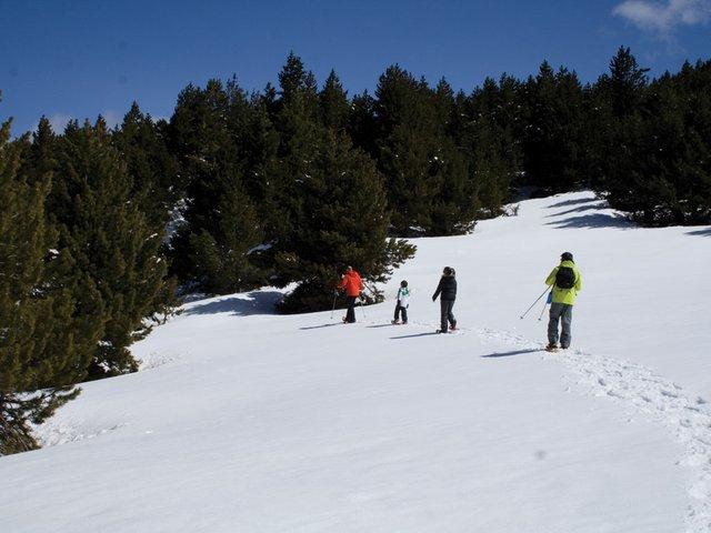 snow-shoeing2.jpg