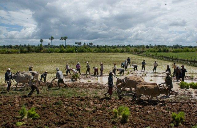 Camboya 2