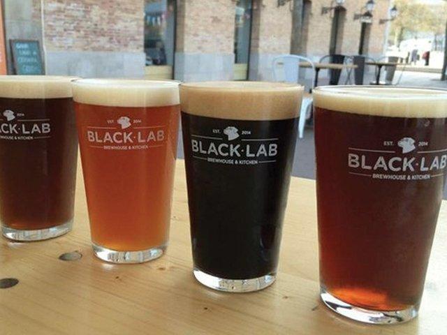 Black-Lab.jpg