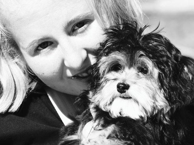 animaltherapy3.jpg