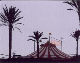 Circ Nocurn
