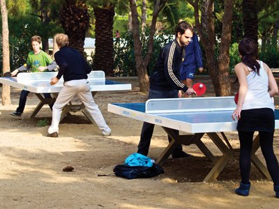Ping pong home