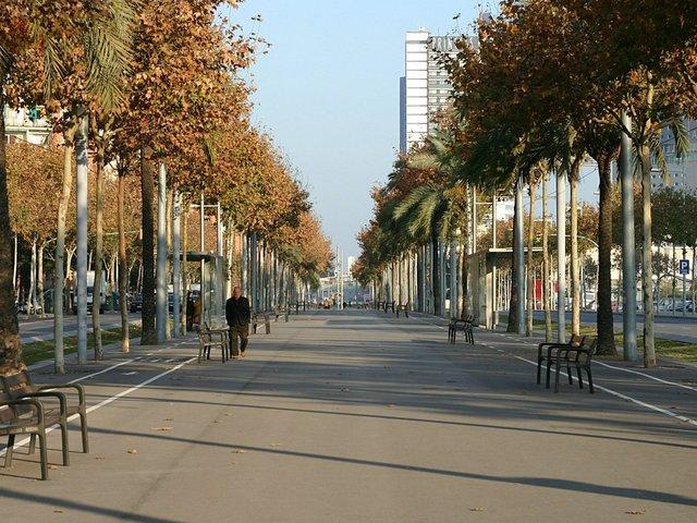 correr-por-la-ciudad-Barcelona.jpg