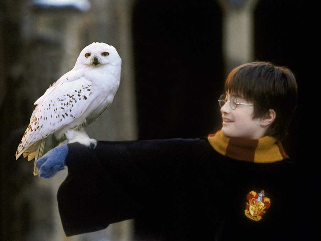 harry-potter-in-concert.jpg