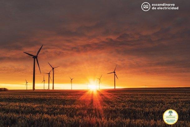 Escandinava-de-Electricidad---M-BCN-2.jpg