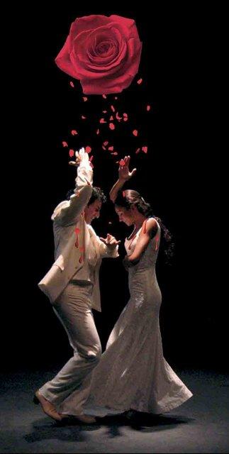 Circular Flamenco