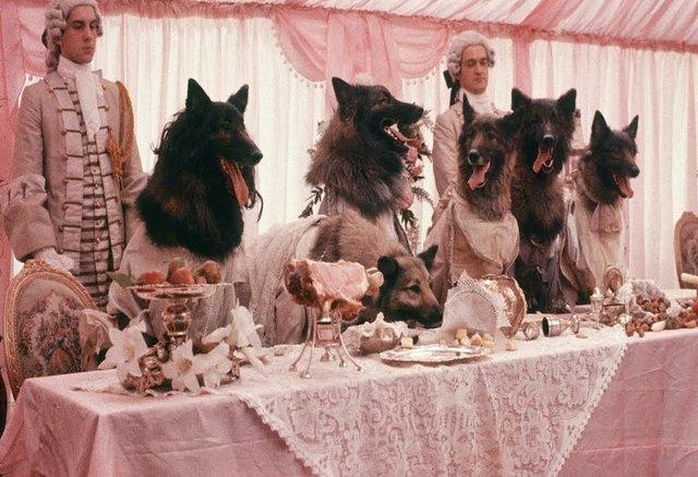 Company-wolves.jpg