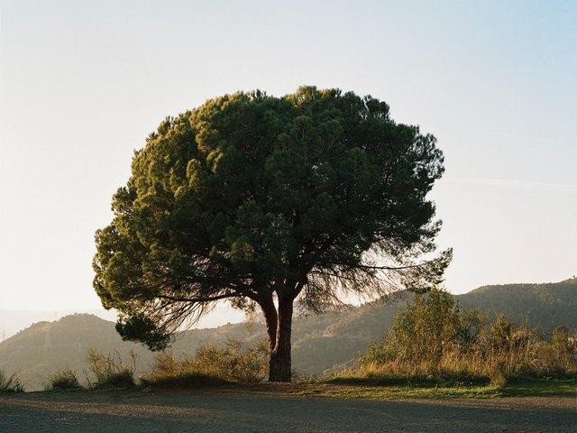 photo-essay-breathing-space.jpg