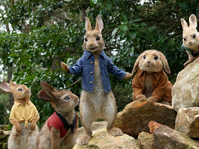 film-review-peter-rabbit.jpg
