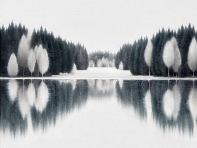 Reflected Winter