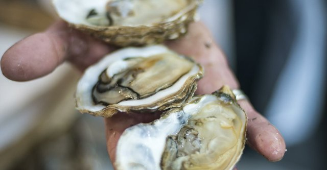 Les pêcheurs de perles (The Pearl Fishers).jpg