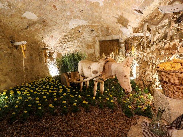 Girona-Temps-de-Flors-Photo-by-Joan-(Flickr)-11.jpg