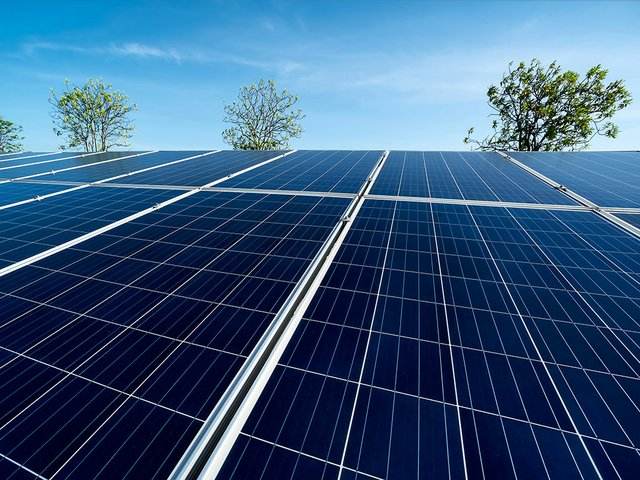 solar-panels-trees-and-sky.jpg