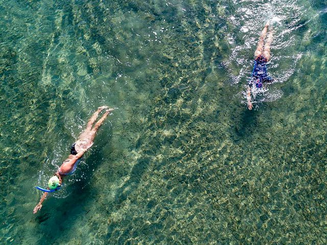 two-swimmers-in-the-sea-from-above-snorkeling-Photo-by-Andreas-Gücklhorn-on-Unsplash.jpg