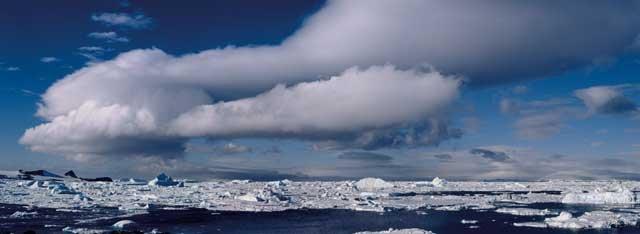 Mireya Masó Antàrtida