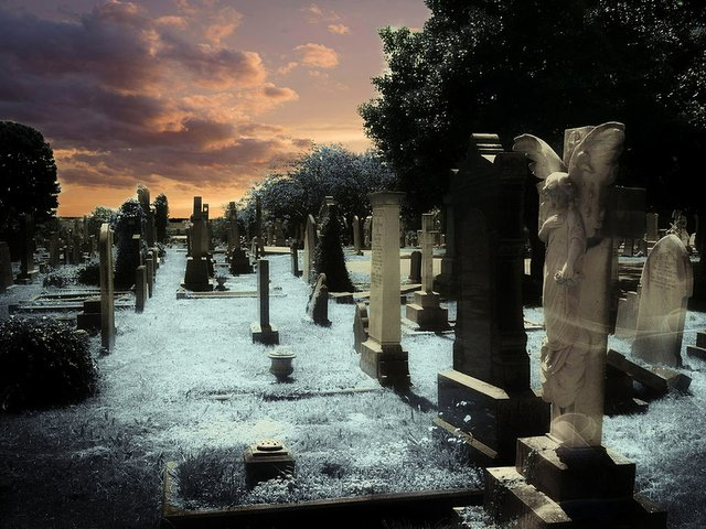 graveyard-.jpg