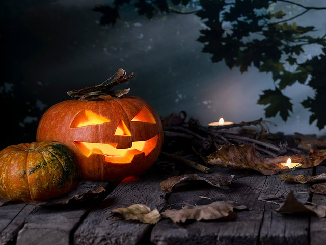 halloween-pumpkins-head-jack-o-lantern-candles-wooden-table-mystic-forest-night-hallo.jpg