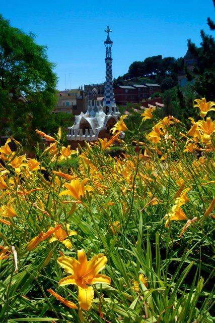 Parc Güell and flowers