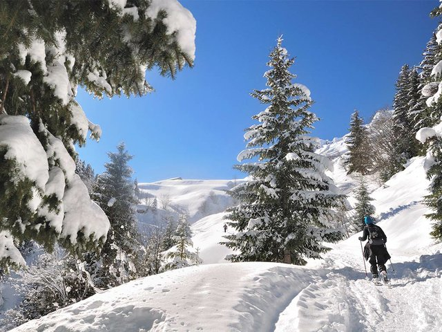 view-back-hiker-alone-climbing-snowy-mountain-with-snowshoes.jpg