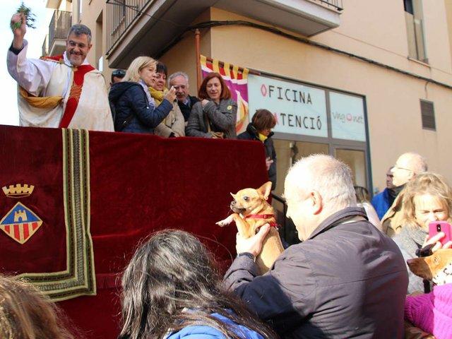 Blessing-of-the-animals-for-Sant-Antoni-January-17,-2019-Ajuntment-de-Vilanova-i-la-Geltrú-(CC-BY-ND-2.0)-05.jpg