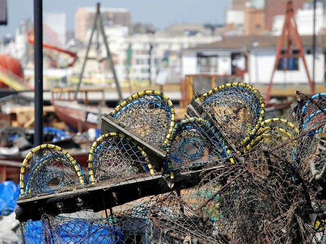lobster-pots-344347_1920.jpg