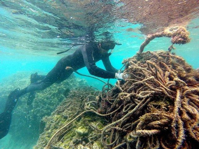 Marine-debris-collection,-photo-courtesy-of-USFWS-Pacific-Region-(CC-BY-NC-2.0)-04.jpg