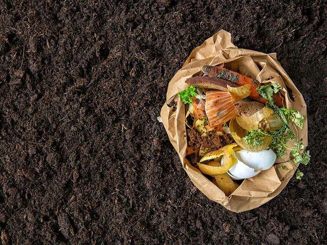environmental-control-sorting-food-waste-environmental-bag.jpg