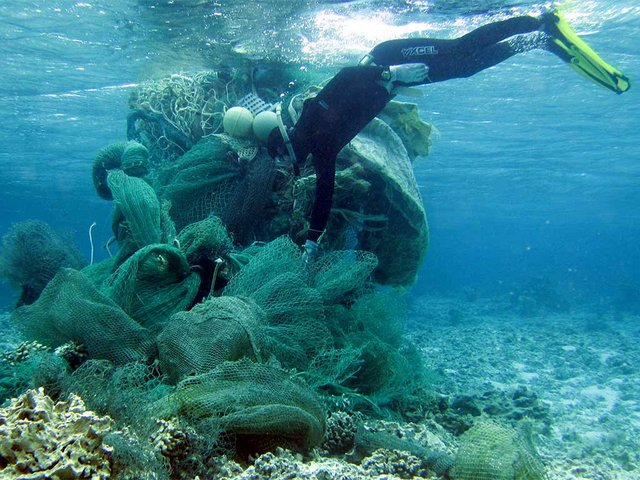 Marine-debris-collection,-photo-courtesy-of-USFWS-Pacific-Region-(CC-BY-NC-2.0)-05.jpg
