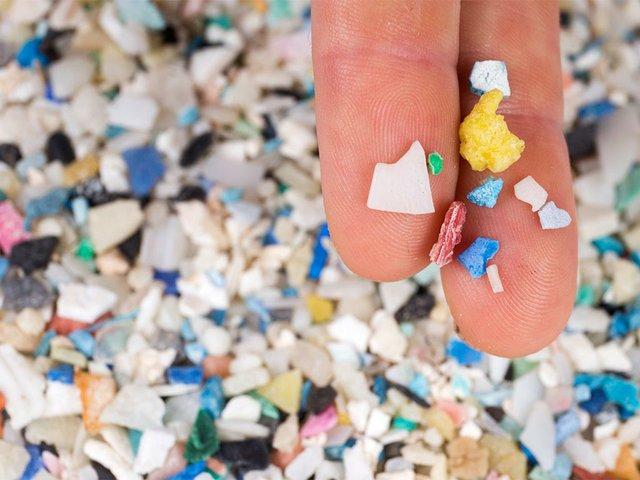 Microplastics-found-along-Florida's-coast,-photo-courtesy-of-Florida-Sea-Grant-(CC-BY-NC-ND-2.0).jpg