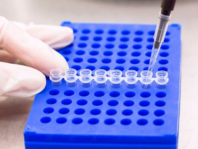plate-pcr-processing-with-tubes.jpg