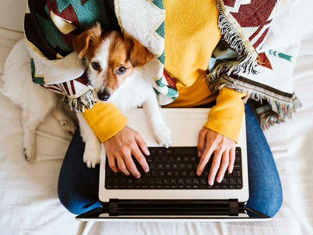 young-woman-working-laptop-home-sitting-with-dog.jpg