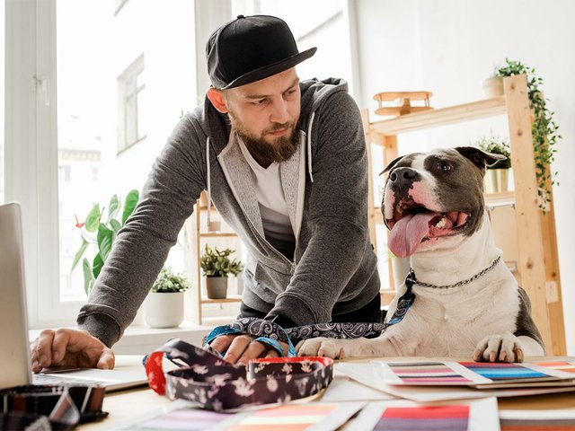 young-man-looking-his-dog-while-bending-workplace-with-laptop-working.jpg