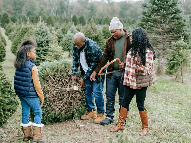 family-picking-christmas-tree-at-tree-farm.jpg
