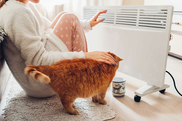 using-heater-at-home-in-winter-woman-warming-her-hands-with-cat-heating.jpg