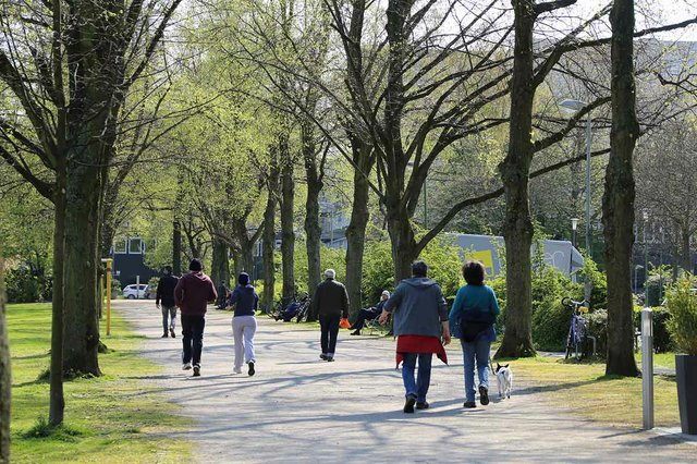 people-waling-in-the-park.jpg