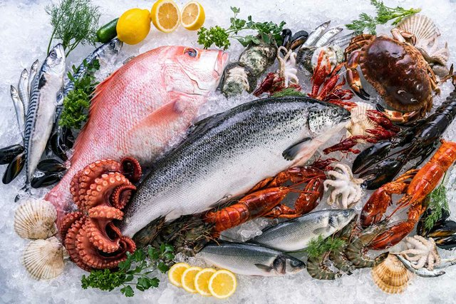top-view-variety-fresh-luxury-seafood-ice-background-with-icy-smoke-seafood.jpg