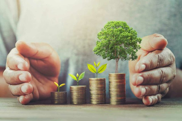 investment-money-table-with-tree.jpg