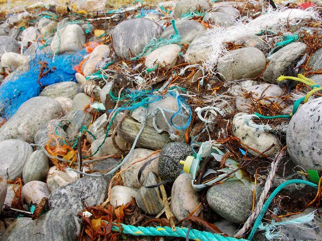 Marine-litter-on-the-beach.-Photo-by-Bo-Eide-(CC-BY-NC-ND-2.0).jpg