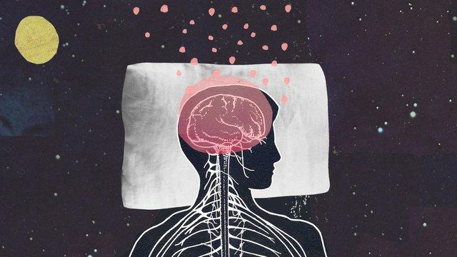 Why Brains Dream.jpg