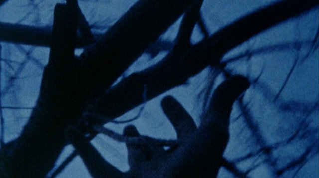Stan Brakhage. Anticipation of the Night.jpeg