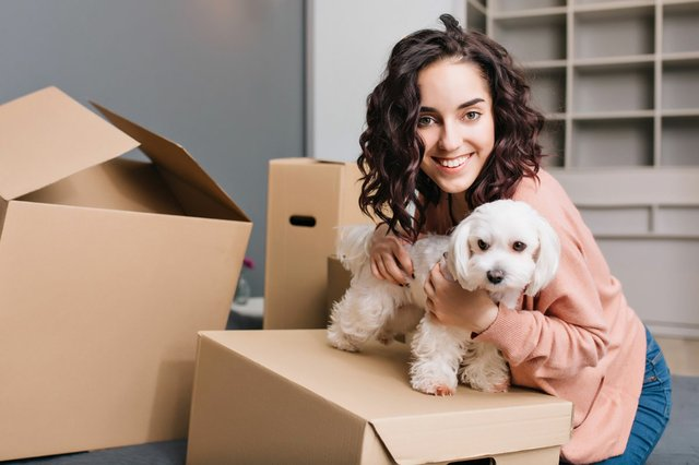 moving-new-apartment-young-woman-with-little-dog-chilling-bed-surround-carton-boxes-with-pet-smiling.jpg